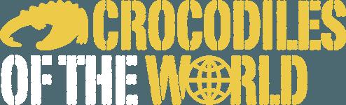 Croc Shop Ltd