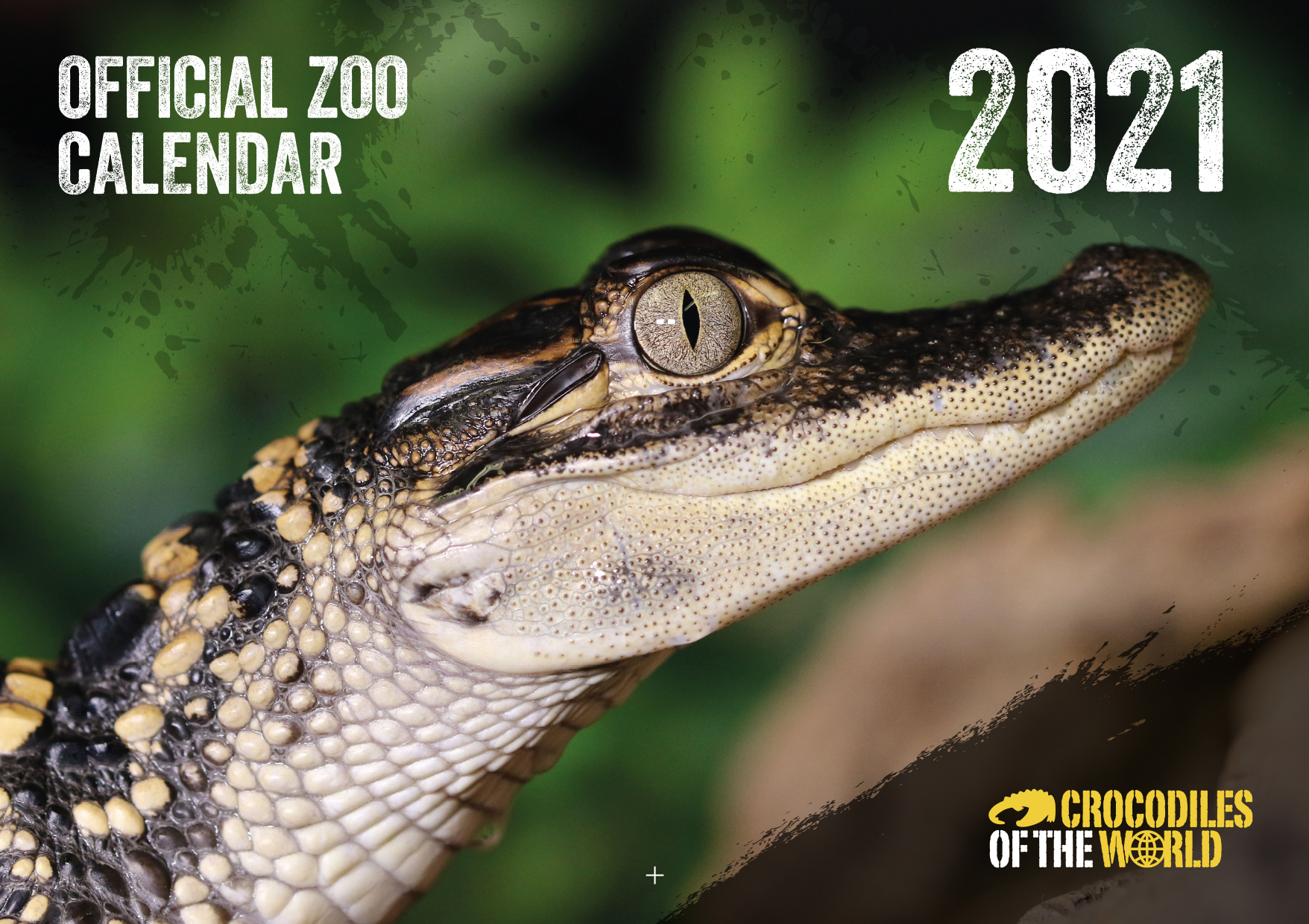 Snap up your 2021 Calendar