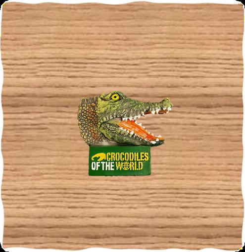 COTW Croc Head Logo Magnet
